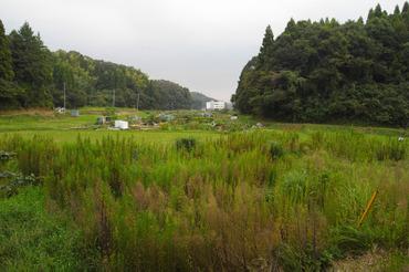 Aki2010092001