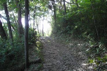 Kunemichi20101016