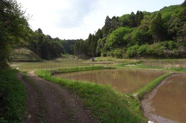 Tambo2011050404