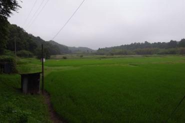 Denen2011062602