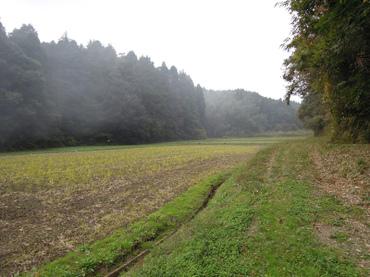 Sampo2011110502