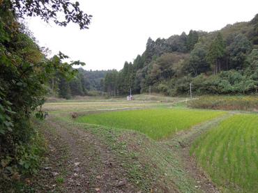 Sampo2011110510