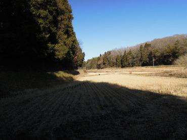 Yatsuda20111225