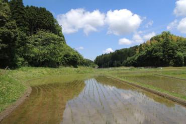 Yatsuda2013051203