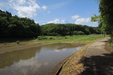 Yatsuda2013051206