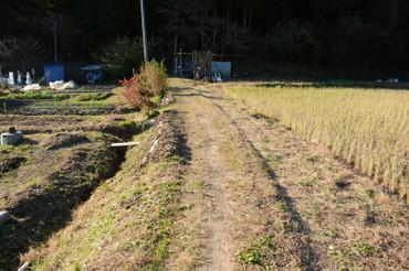 Michi2013113001