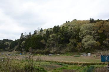 Yama2014042001