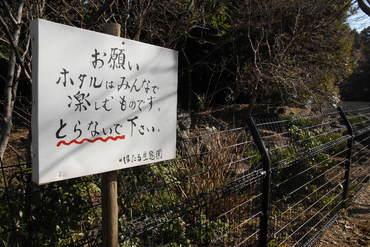 Izumiya2007020404